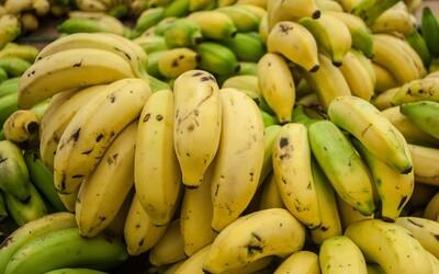 Japonští farmáři vynalezli nový druh banánů. Mají jedlou slupku