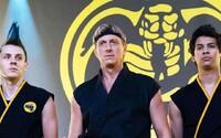 Jeden z najlepších seriálov posledných rokov sa vracia s 3. sériou. Cobra Kai zavíta na Netflix už v januári