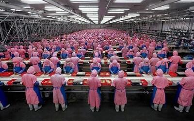 Jedinečný pohled do čínské fabriky na výrobu iPhonů. Disciplína jako v armádě a technologie pro rozpoznávání obličeje