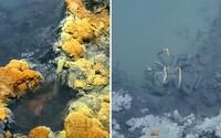 Jezírko hluboko pod hladinou Mexického zálivu s doslova smrtelným koktejlem. Mořská slaná voda se s ním nemísí
