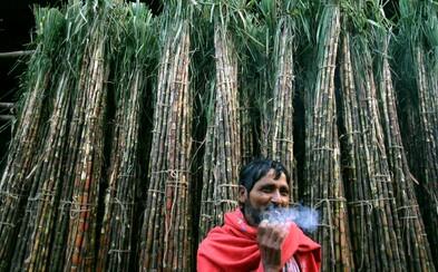 Jezte více cukru, radí lidem masivní kampaň v Indii
