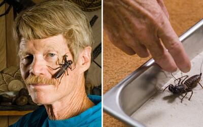 Justin Schmidt sa v mene vedy nechal bodnúť hmyzom viac než tisíckrát. Vytvoril vlastnú stupnicu bolesti, ale bojí sa japonského sršňa