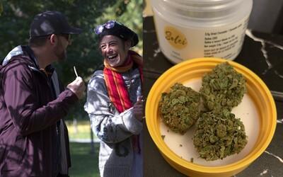 Kanaďané spolu na internetu vesele recenzují marihuanu. Po legalizaci si posílají doporučení