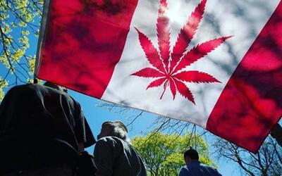 Kanaďané v první den legalizace vykoupili všechny zásoby marihuany