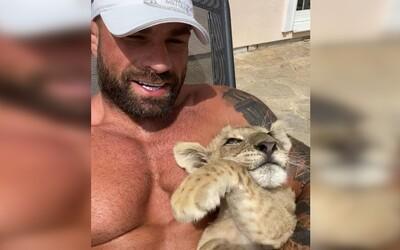 Karlos Vémola začal doma chovat lvici, kterou prý někdo vyhodil v krabici ven. Chce ji dostat zpátky do přirozeného prostředí