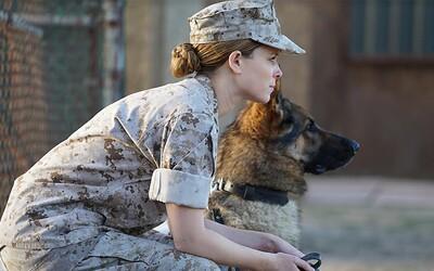 Kate Mara ako vojačka bojuje so svojím psom v dojemnom traileri pre drámu podľa skutočných udalostí na pozadí vojny v Iraku