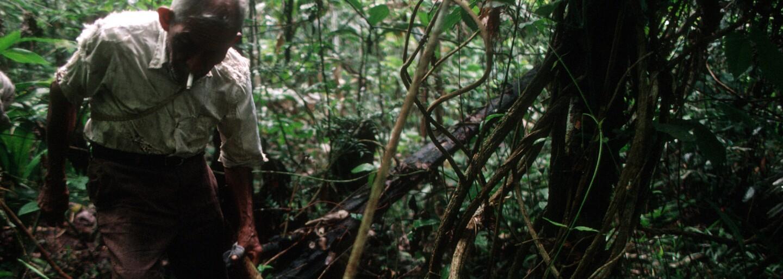Katka odjela do Peru na ayahuascový rituál. Setkala se s démony, pak se jí spustily psychózy a musela i na elektrošoky