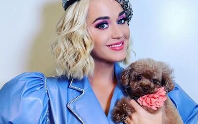 Katy Perry sa chce s tebou voziť. Nebrzdi, cíť sa bezpečne a dovoľ jej, aby sa ti prstami prehrabovala vo vlasoch
