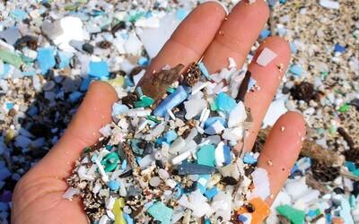 Každou hodinu pravděpodobně vdechujeme 11 malých kousků plastu, ukázala studie