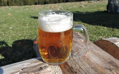 Kdo vlastní známá česká a slovenská piva? Někteří majitelé tě zřejmě překvapí