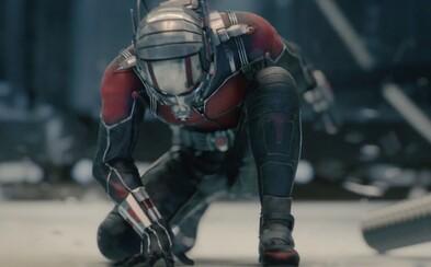 Keď jeden názor nestačí, do Ant-Mana sa pustí redakcia Filmkultu
