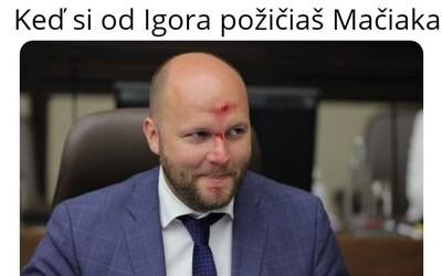 Keď si od Igora požičiaš Mačiaka: Slováci si uťahujú z krvavého poranenia Jaroslava Naďa