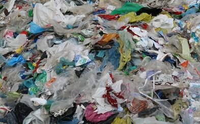 Keňa zavedla nejtvrdší trest na světě za používání igelitových tašek. Provinilci hrozí pokuta 830 tisíc korun nebo 4 roky za mřížemi