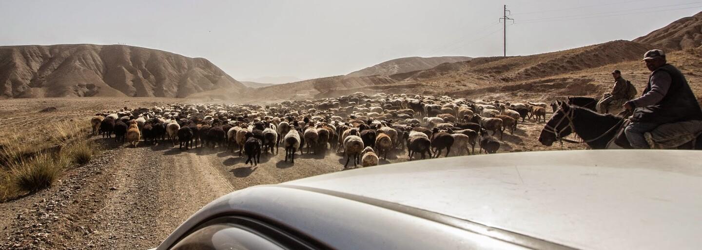 Kirgizsko je plné majestátnych hôr i opitých pastierov. Miestni poznajú aj Československo (Rozhovor)
