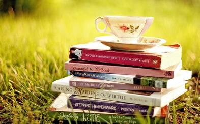 Knihy, ktoré vám za málo času presýtia dušu #3