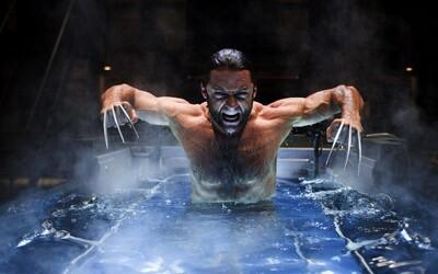 Koľko ľudí už Wolverine počas filmovej ságy X-Men zabil? Krvavá kompilácia vám to prezradí