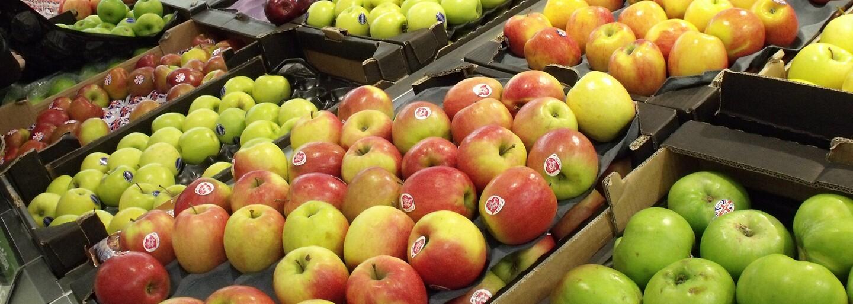 Konec plýtvání jídlem: Obchodní řetězce budou muset dávat neprodejné potraviny charitám, jinak dostanou pokuty