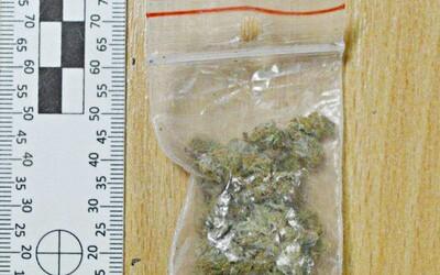 Košičanovi našli 8 gramov marihuany, dostal 12 a pol roka basy. Predtým mal podmienku