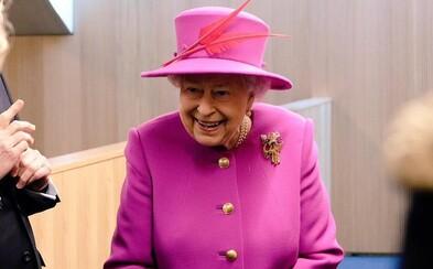 Královna Alžběta II. hledá správce instagramového profilu. Nabízí 74 tisíc korun měsíčně