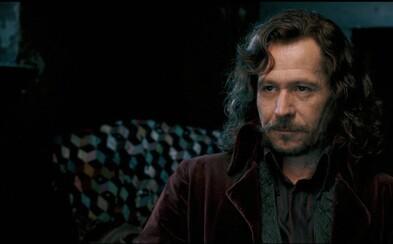 Krátky príbeh o rebelských zločinoch Siriusa Blacka a Jamesa Pottera od J. K. Rowlingovej ukradli neznámi lupiči