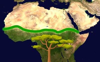 Krížom cez Afriku postavia obrovský prírodný múr. Má zastaviť zväčšovanie púšte a zachrániť prírodu aj životy ľudí