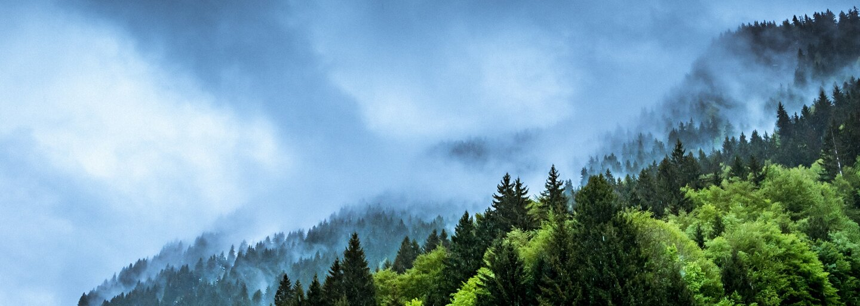 Ktoré krajiny vypúšťajú najviac oxidu uhličitého do ovzdušia a ako je na tom Slovensko?