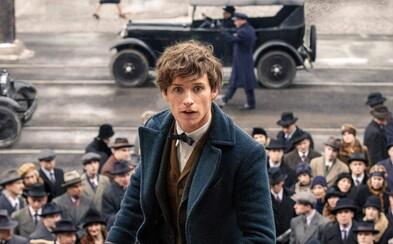 Ktoré snímky v kinách stihli ešte zarobiť pred premiérou Rogue One? (Box Office)