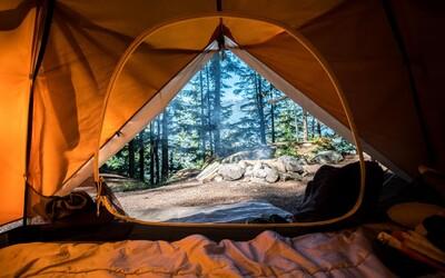 KVÍZ: Si pripravený na lesné dobrodružstvo? Zisti, či patríš do lesa alebo by si mal radšej zostať doma