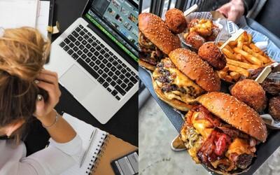 KVÍZ: Vieš, čo robí foodbloger, principál či obchodný zástupca? Otestuj svoje znalosti o zamestnaniach