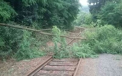 Kvôli popadaným stromom meškajú vlaky aj viac ako 2 hodiny. Silné búrky narobili veľké škody
