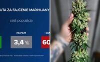 Len 1/3 ľudí podporuje miernejšie tresty za marihuanu: Najodmietavejší postoj majú voliči KDH