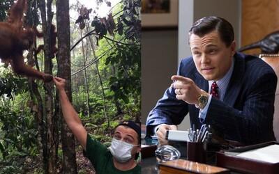 Leonardo DiCaprio už investoval 100 milionů dolarů do boje proti klimatickým změnám