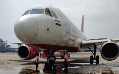 Letadlo nemohlo vzlétnout, roj včel bránil pilotům ve výhledu. Pomohlo až vodní dělo