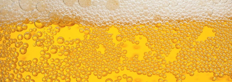 Letná brigáda snov. Za 12-tisíc dolárov budeš svet informovať o tom, prečo je pivo také úžasné