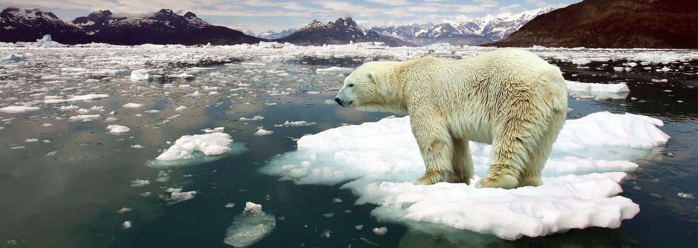 Letošní červenec byl dost možná nejteplejším měsícem, jaký kdy Země zažila