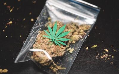 Lucembursko se může stát první evropskou zemí, která legalizuje marihuanu