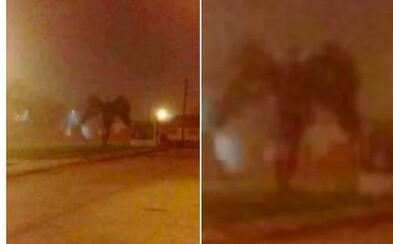 Lidé zachytili v ulicích Phoenixu démona. Neznámý tvor přišel oslavit nový rok, i když se z něj vyklubala jen palma