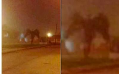 Ľudia zachytili v uliciach amerického Phoenixu démona. Neznámy tvor prišiel osláviť nový rok, aj keď sa z neho vykľula len palma