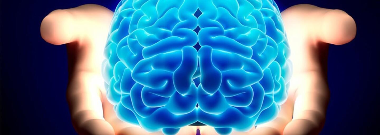 Ľuďom s Alzheimerovou chorobou svitá na lepšie časy. Vedci vrátili pokusným myšiam ich pamäť