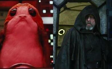Luke po dlhej dobe vchádza na Millennium Falcon a Chewbacca má po krk otravných Porgov. Nový televízny spot k The Last Jedi vás isto pobaví