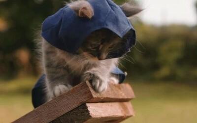 Mačiatka nahradili assassínov v Assassin's Creed Unity a zaútočili na stráže