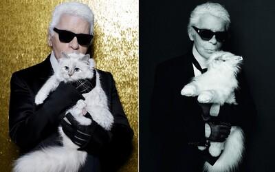 Mačka Karla Lagerfelda dostala svoju vlastnú plyšovú podobu. Do predaja poputuje takmer za 500 €