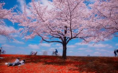 Magické pouličné fotografie z ďalekého Japonska poukazujú na jeho svojskosť a tajomnú charizmu