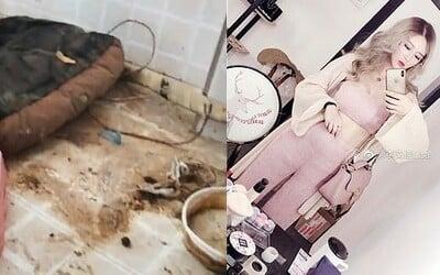 Majiteľka bytu odhalila dvojitý život influencerky z Číny. Ukázala, v akom neporiadku žije dievča s miliónom followerov