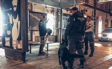 Mal byť v karanténe, no vybral sa do krčmy a napadol policajtov. Súd poslal Slováka na pol roka za mreže