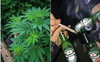 Marihuana je obrovským rizikom pre miliardový trh s alkoholom, tvrdí nová analýza