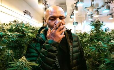 Marihuana už nebude na seznamu nejnebezpečnějších drog, rozhodlo OSN