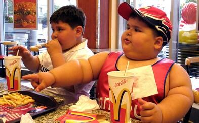 McDonald's přestane v Británii a Irsku nabízet plastová brčka. Od září je nahradí papírovou alternativou