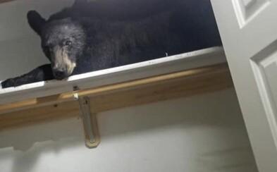 Medvěd se vloupal do domu a pak unavený usnul v šatníku, kde ho našli policisté