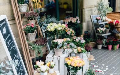 Medzinárodný deň žien je za dverami. Ako vyriešiť dilemu a vybrať kvety, ktoré sa budú naozaj páčiť?